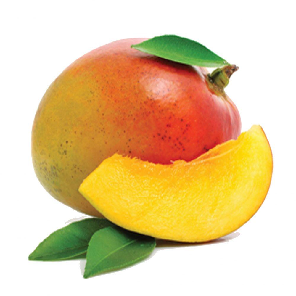 Ittrade - Mango - Africa Ghana